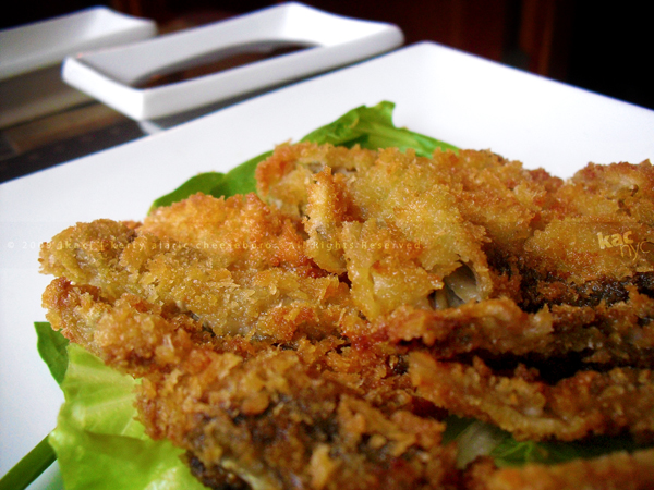 Sushi Suki fried oysters
