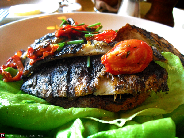 Cafe D'Alsace Sardine Filets
