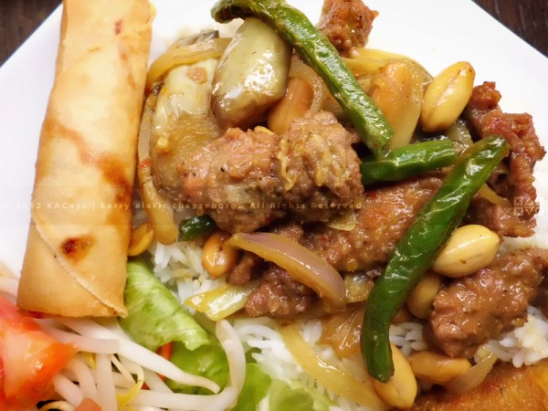 Spice Noodle Beef Massamum Curry