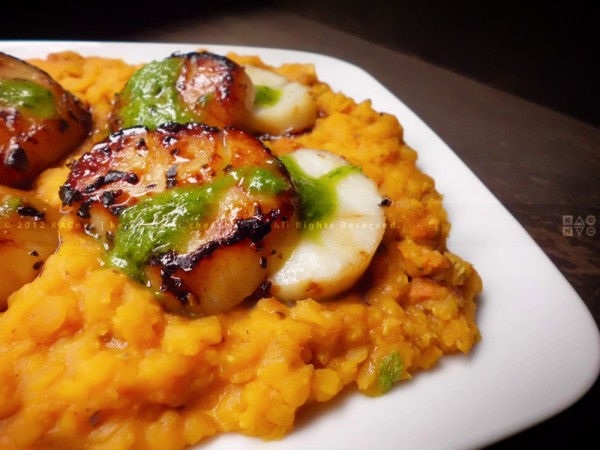Seared Sea Scallops over Red Lentils with Sausage