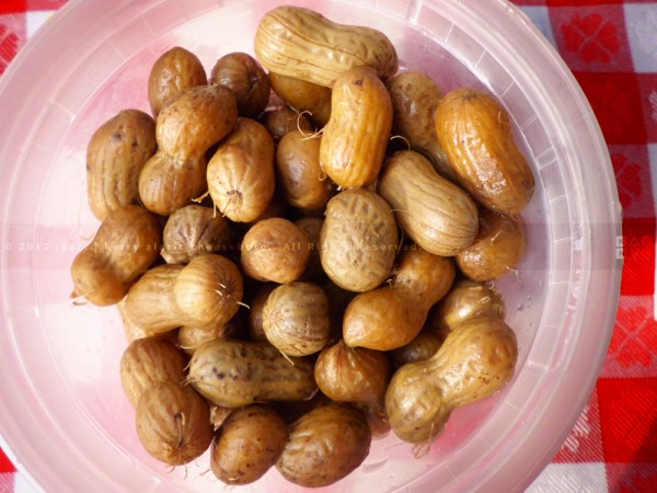 South Carolina-Style Boiled Peanuts