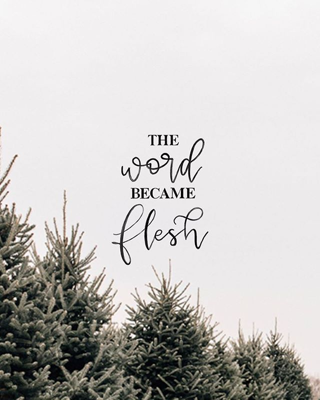 The Word became flesh and made his dwelling among us. We have seen his glory, the glory of the one and only Son, who came from the Father, full of grace and truth. - John 1:14⠀ ⠀ The Word became flesh. GOD came to Earth as a human.⠀ ⠀ He lived among us, teaching and healing and loving.⠀ ⠀ He suffered. He died. But because He is God, He was raised from the dead!⠀ ⠀ The Word became flesh so that we could spend eternity with Him!⠀ ⠀ For God so loved the world that he gave his one and only Son, that whoever believes in him shall not perish but have eternal life. For God did not send his Son into the world to condemn the world, but to save the world through him. - John 3:16-17⠀ ⠀ Devotion by @mrsalexaeby | Design by @twelvetwentyninesupplyco #VRSLY #madewithVRSLY #VRSLYdevotional