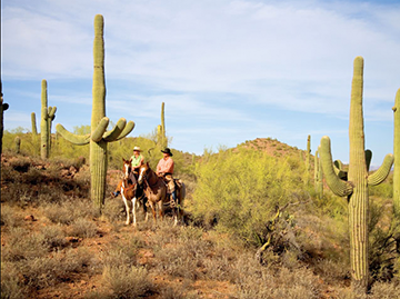 rancho-de-los-caballeros-resort-for-meetings-arizona