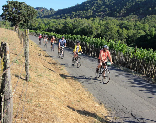 napa-sonoma-bike-tours-vineyards-teambuilding