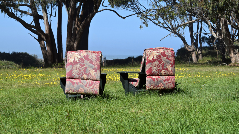 floral chairs 800.jpg