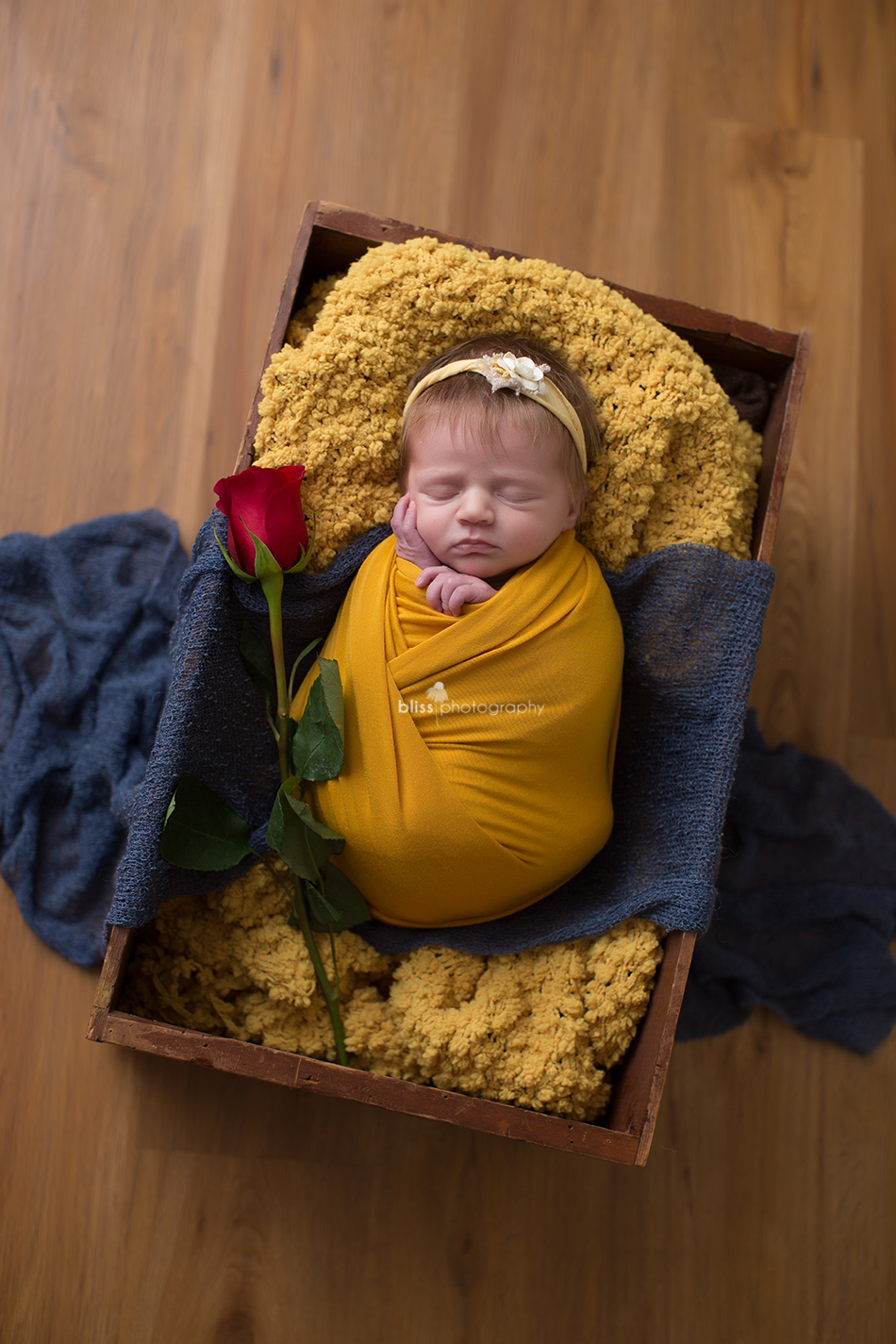 disney princess beauty and the beast newborn