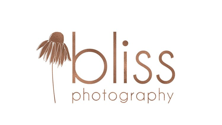 Bliss Photography Rochester MN Newborn and Family Photographer