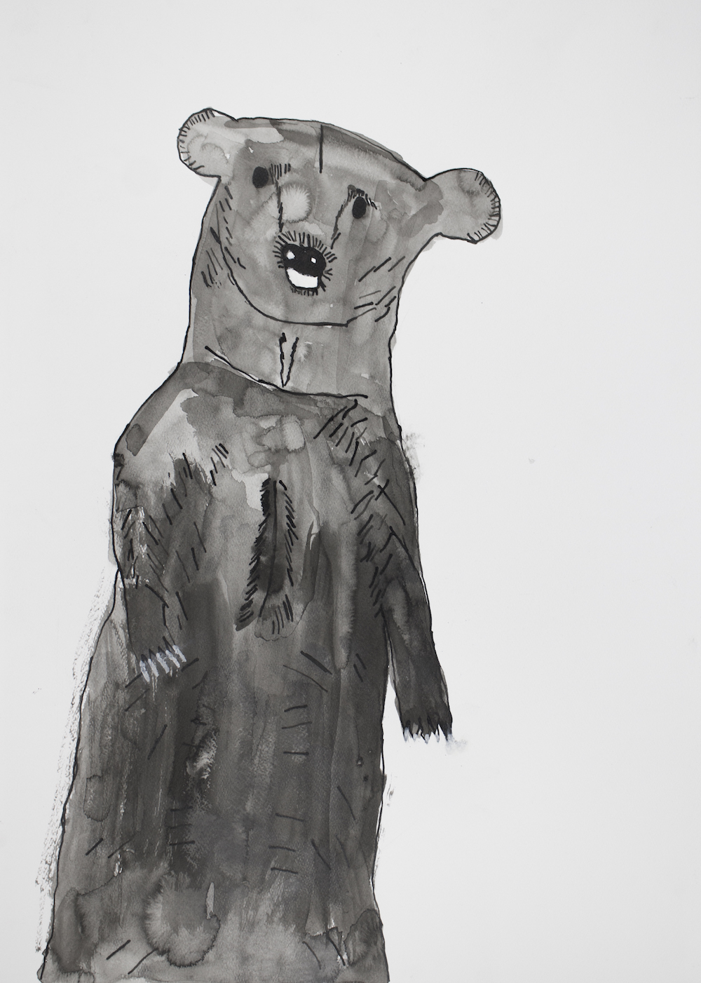 Bear, 2017, ink on paper, 50x70cm