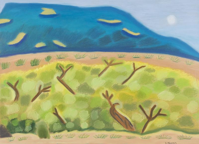 Desert Gums, 2017, pastel on paper, 75x55cm