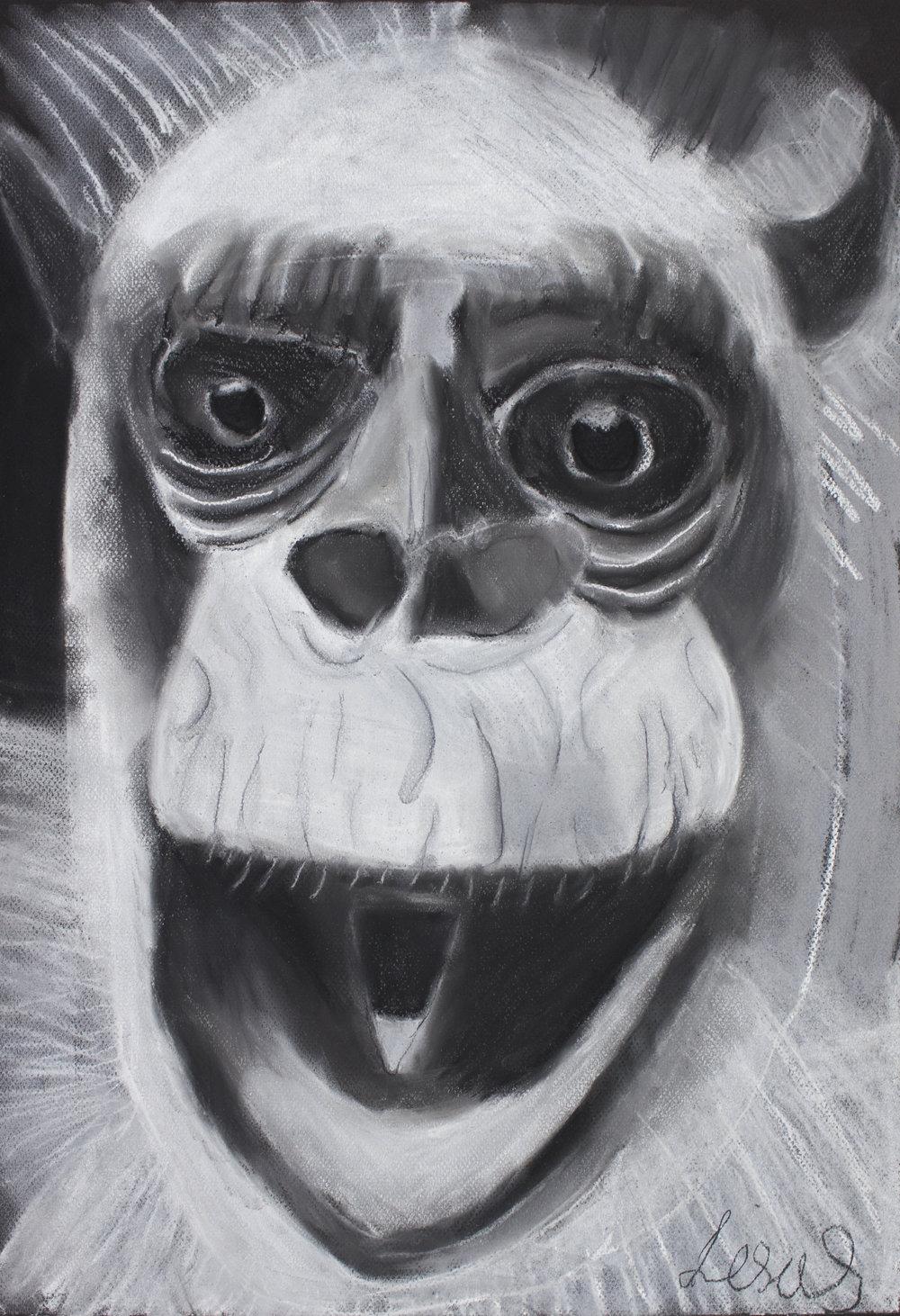Laughing Chimpanzee, 2017, pastel on paper, 41x59cm