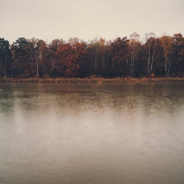 #vscocam #autumn #rain #lake #Stover #devon #vsco