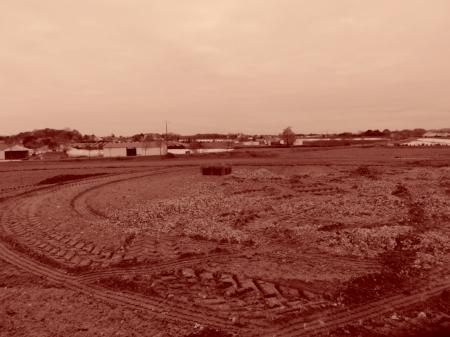 Tous les ans une grande partie de la récolte de mâche est détruite, en fonction des cours. Cette année, certains maraîchers ont détruit (avec des broyeuses) presque la totalité de leur récolte, et survivent grâce aux subventions publiques.