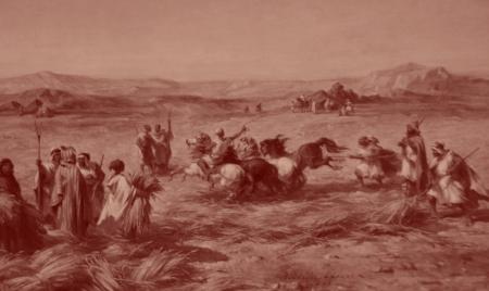 Battage des céréales à l'ancienne : les gerbes de blé sont piétinées par les chevaux. Les grains se séparent ainsi des tiges. Ici en Afrique du Nord, qui était le grenier à blé de la Méditerranée, au temps des Romains.