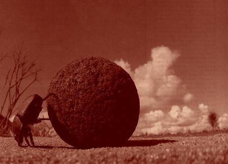 Roule ma boule.