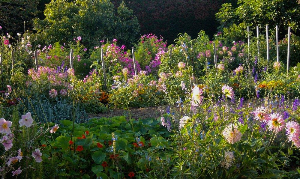 Remarquez les pieds de tomate dans le jardin de Mammy Dette. Les tomates en pleine terre, quel délice ! Mais en Bretagne, pas avant Juillet.