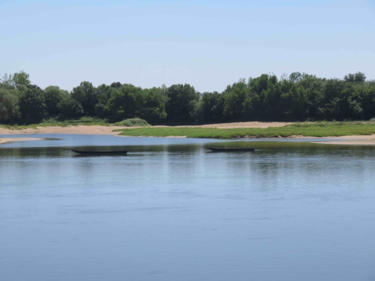 La thyroïde apaisée : le calme retrouvé. La Loire à Ancenis.
