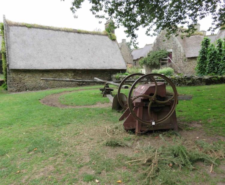 Traction animale : machine à broyer l'ajonc, nourriture pour le bétail. Bretagne début du XX ième siècle.