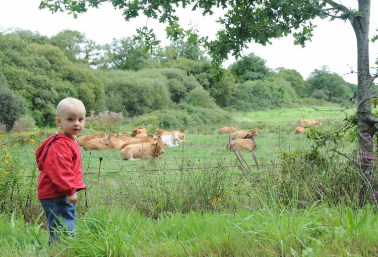 L'enfant au troupeau