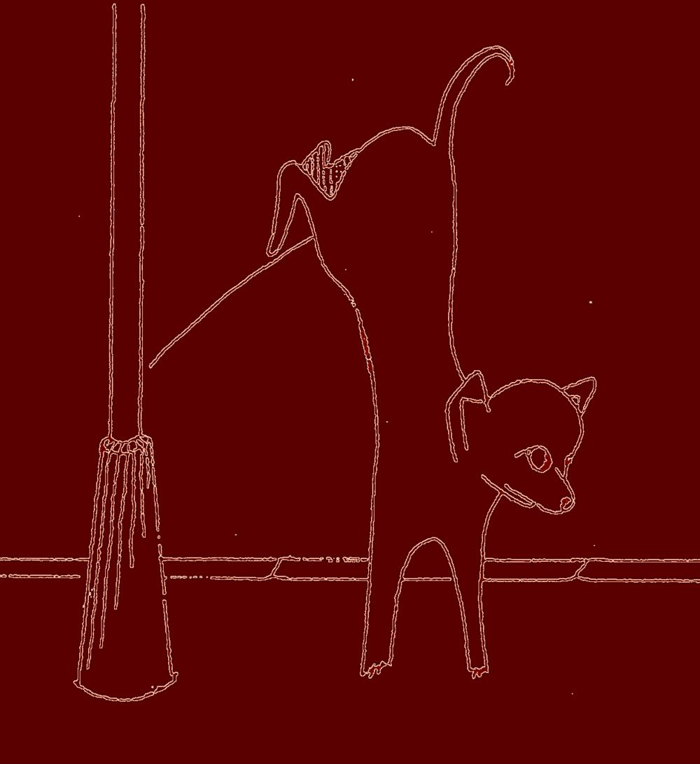 Un petit chien : le chihuahua