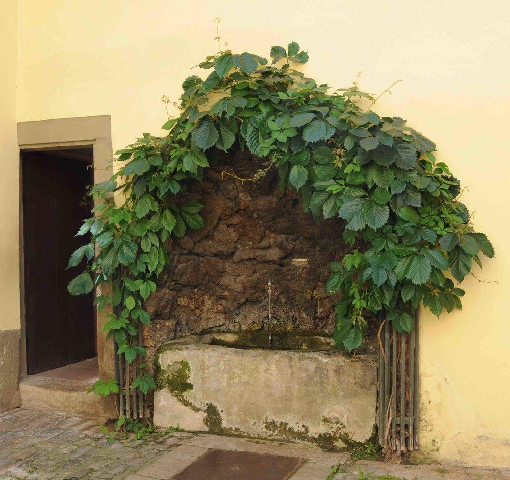 Fontaine de la maison de Goethe