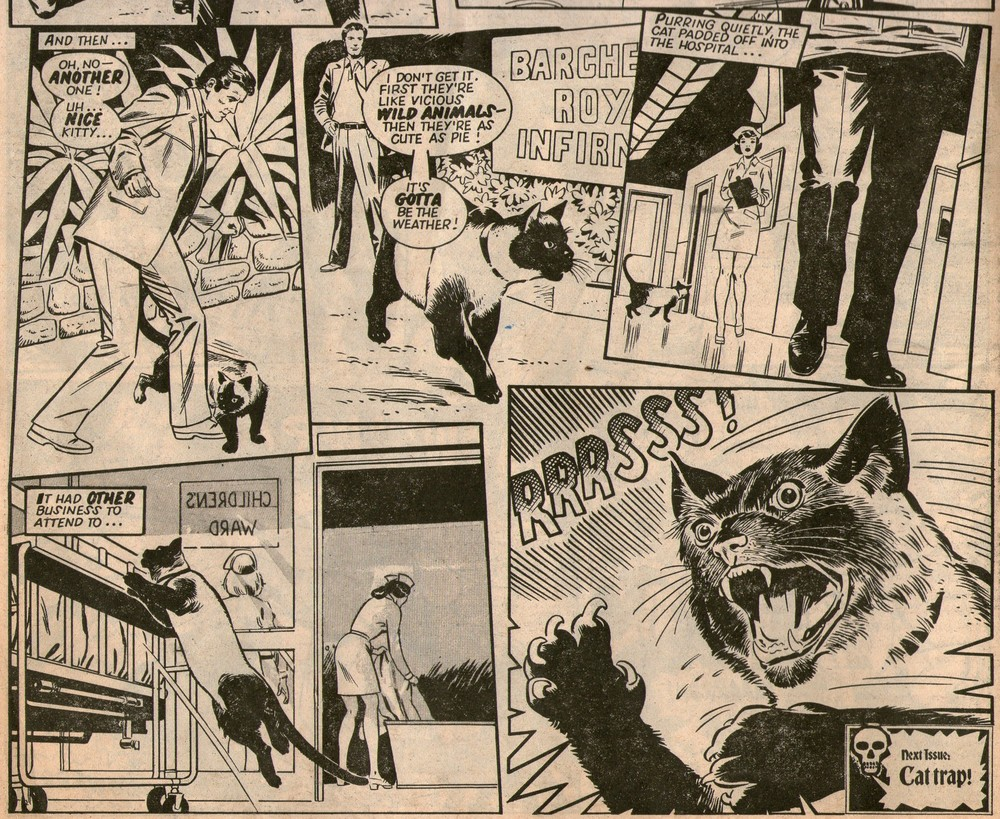 The Terror of the Cats: John Agee (writer), Gonzalez (artist)
