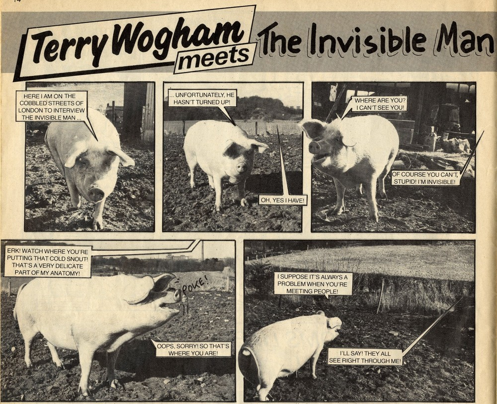 Terry Wogham