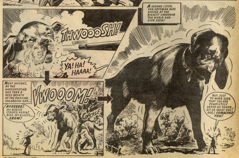 Von Hoffman's Invasion: Eric Bradbury (artist)