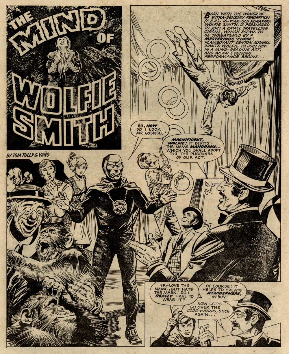 The Mind of Wolfie Smith: Tom Tully (writer), Vicente Va  ñ  o (artist)