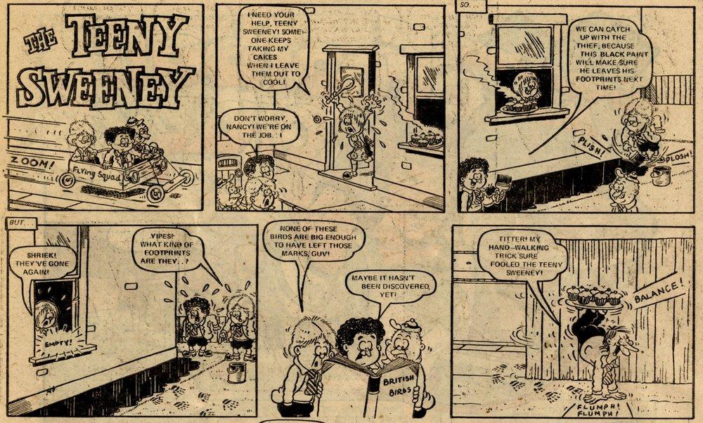 The Teeny Sweeney: Mike Brown (artist)