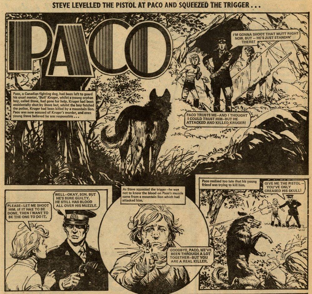 Paco: John Stokes (artist)