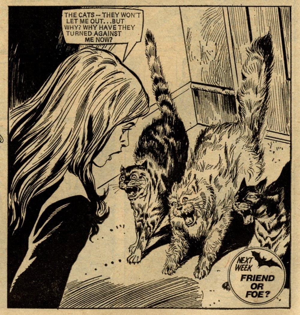The Cats of Carey Street: Mario Capaldi (artist)