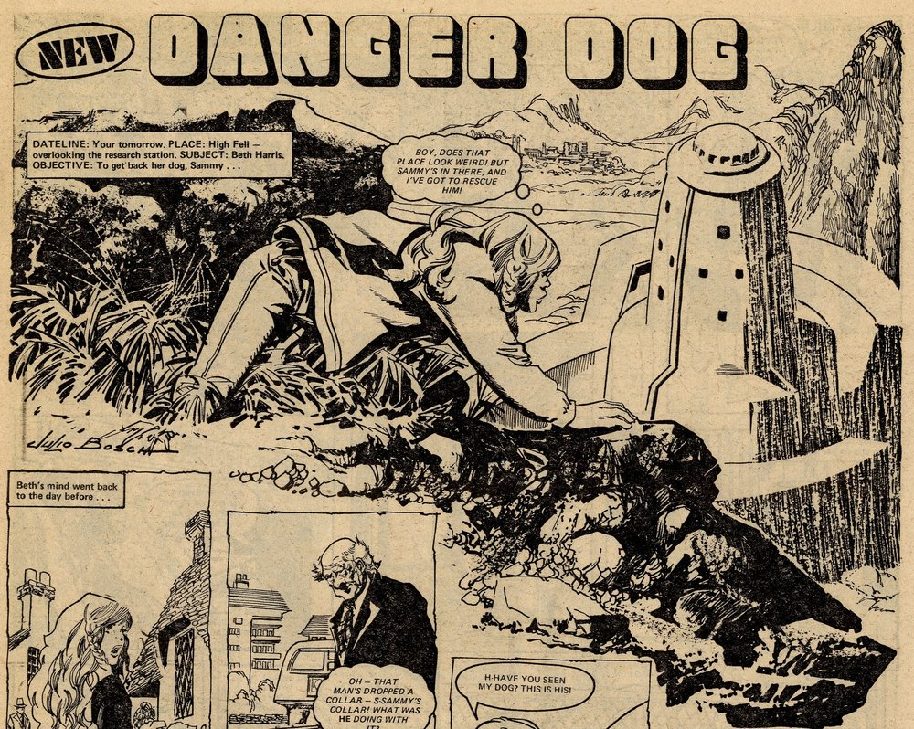 Danger Dog: Julio Bosch (artist)