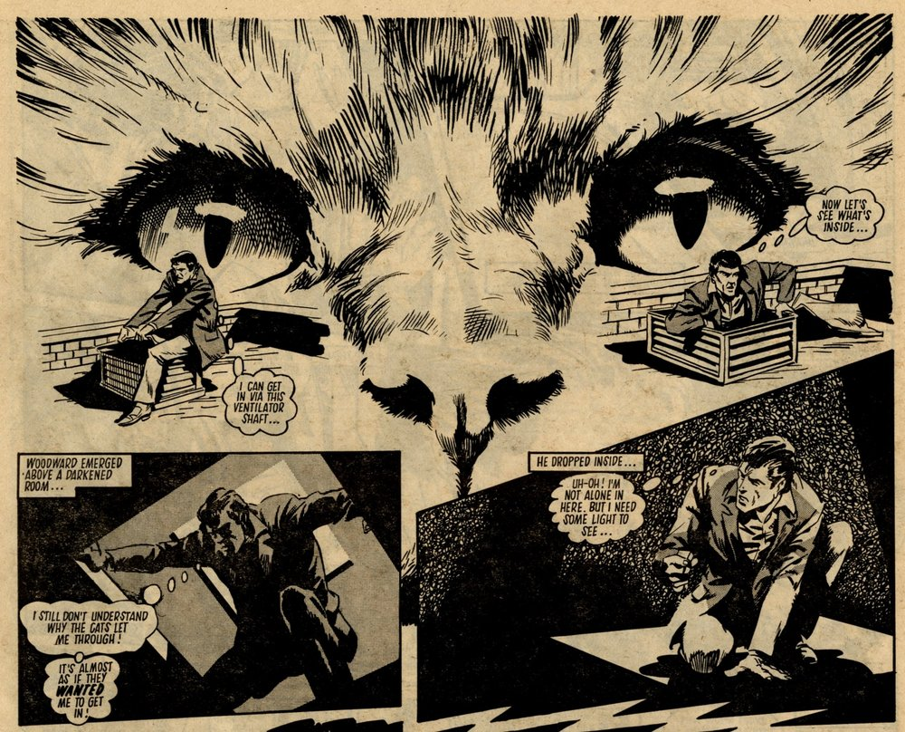 Terror of the Cats: Simon Furman (writer), John Richardson (artist)