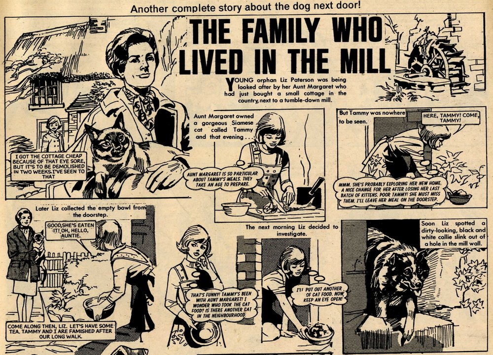The Family who Lived in the Mill: creators unknown