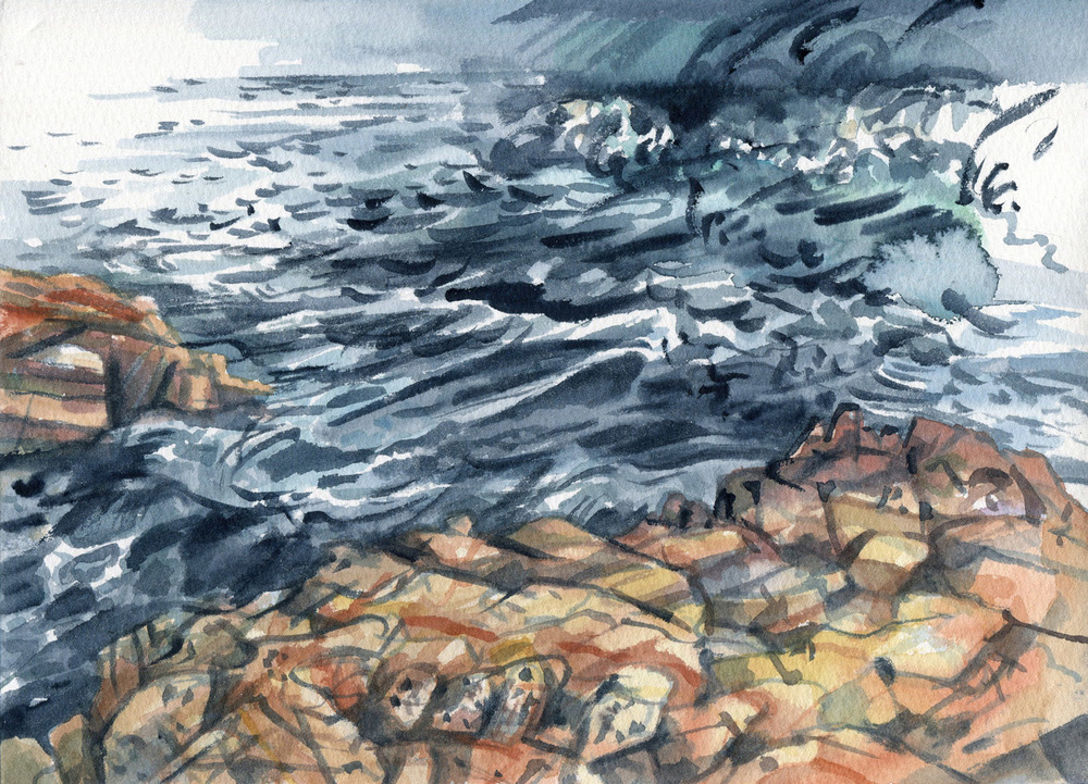 Field Studies (Aragunnu, Mimosa Rocks National Park), watercolour on paper, 18cm x 25cm, 2015