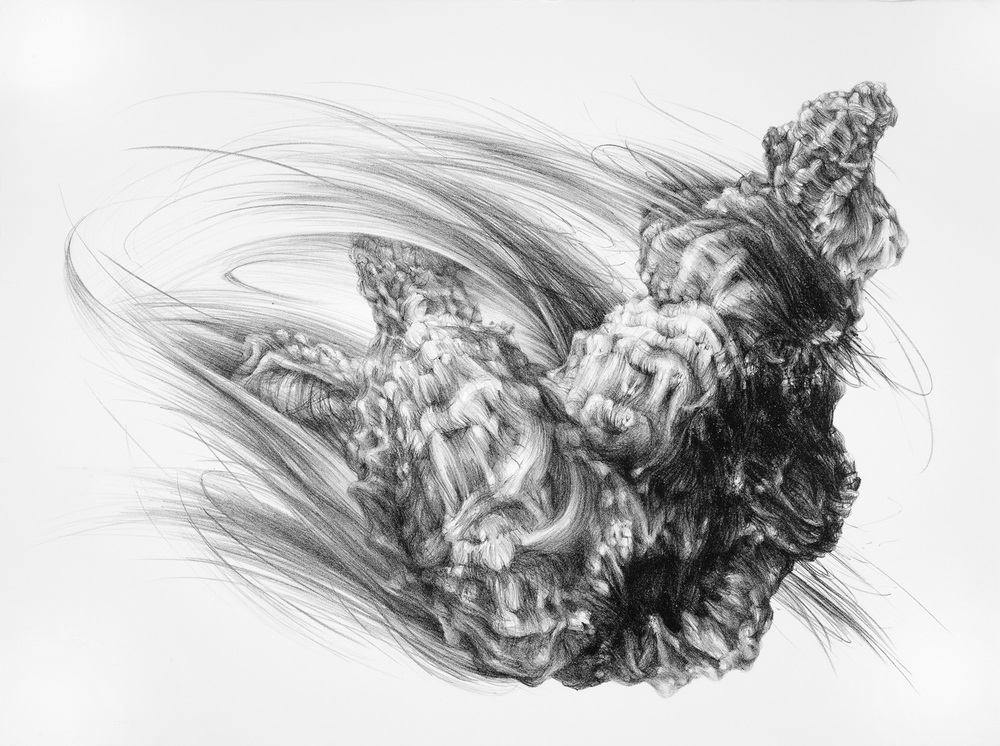 Gape, lithograph, 56 x 76 cm, edition of 5, 2010