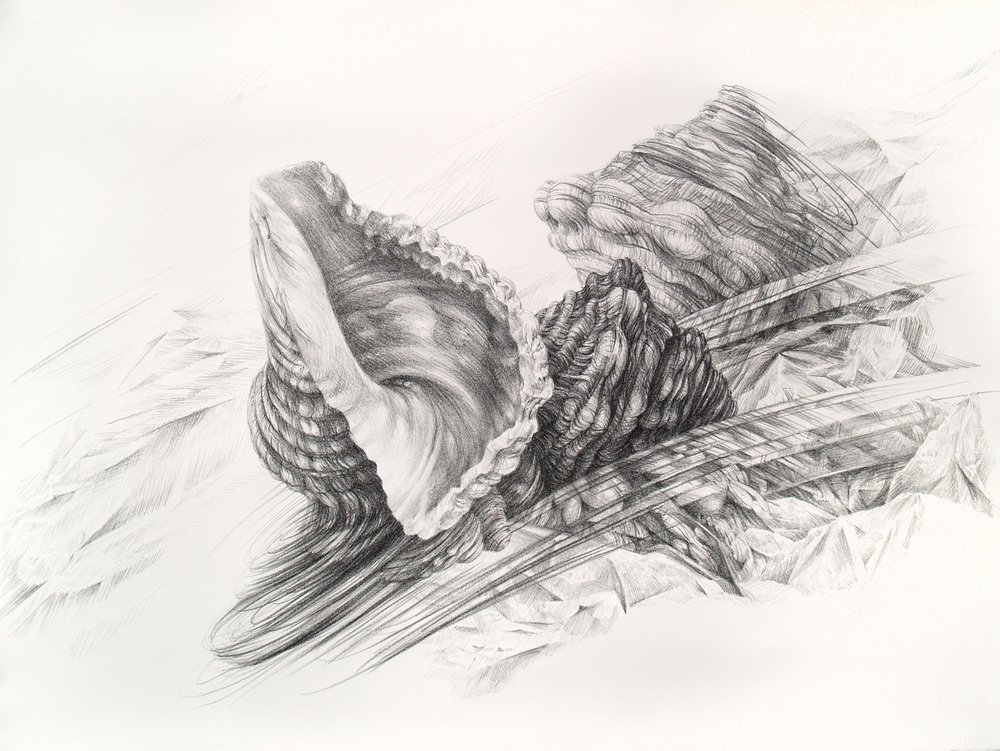 Drift II, lithograph, 56 x 76 cm, edition of 5, 2011.