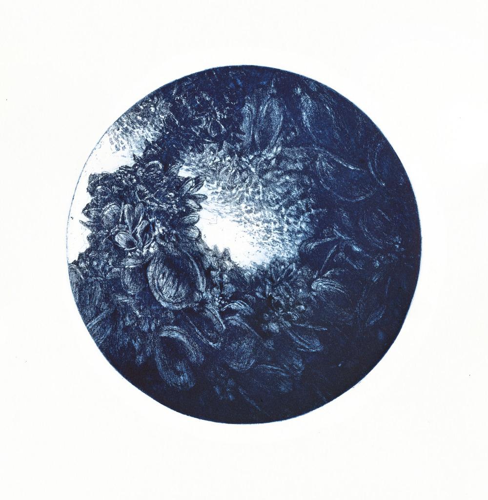 Microcosmos, etching, 20 cm diameter (image), 38 x 28 cm (paper), A.P., 2010