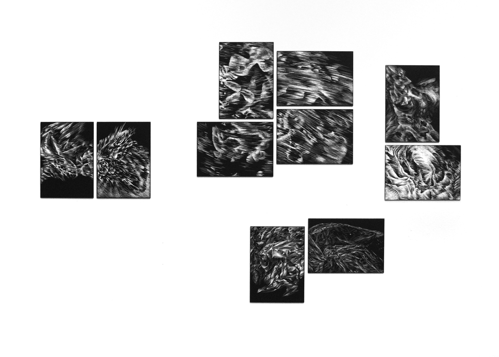 clockwise from left: Rush (2 panels), Alum (2 panels), Skeleton (2 panels), Terrain (2 panels), installation view, scratchboard, 2011.