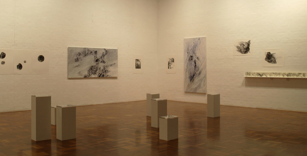 Microcosmos, A.N.U School of Art Gallery, 2010