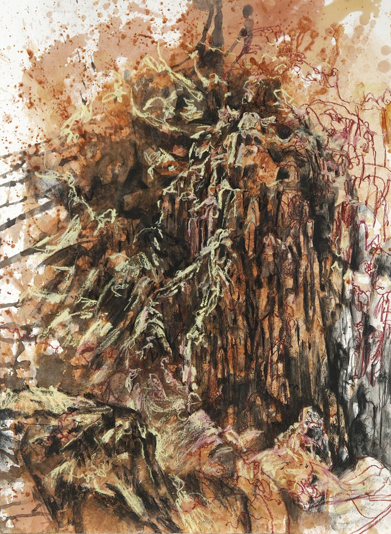 Golden Gully, 2015, charcoal, earth, oil pastel, ink and shellac on paper, 76cm x 56cm