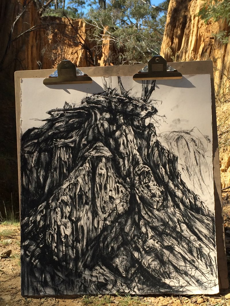 from a series of plein air charcoal drawings