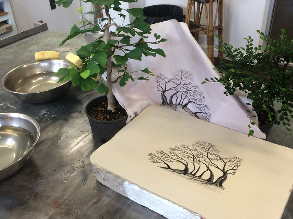assisting enthusiastic Bonsai artist Mike with lithography! + my recently adopted bonsai trees visit the print studio