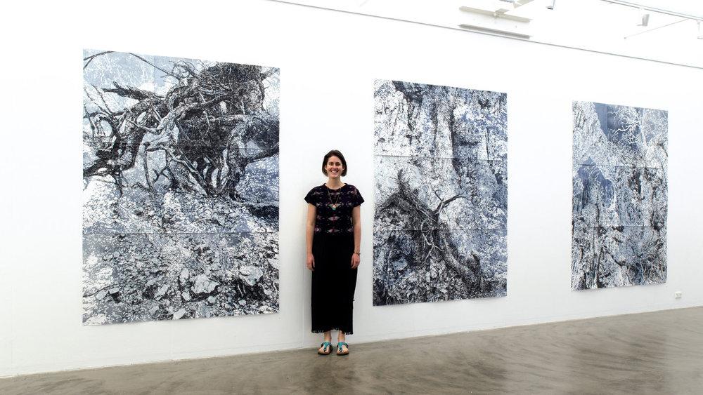 'Precipice' solo exhibition, ANCA Gallery, Canberra