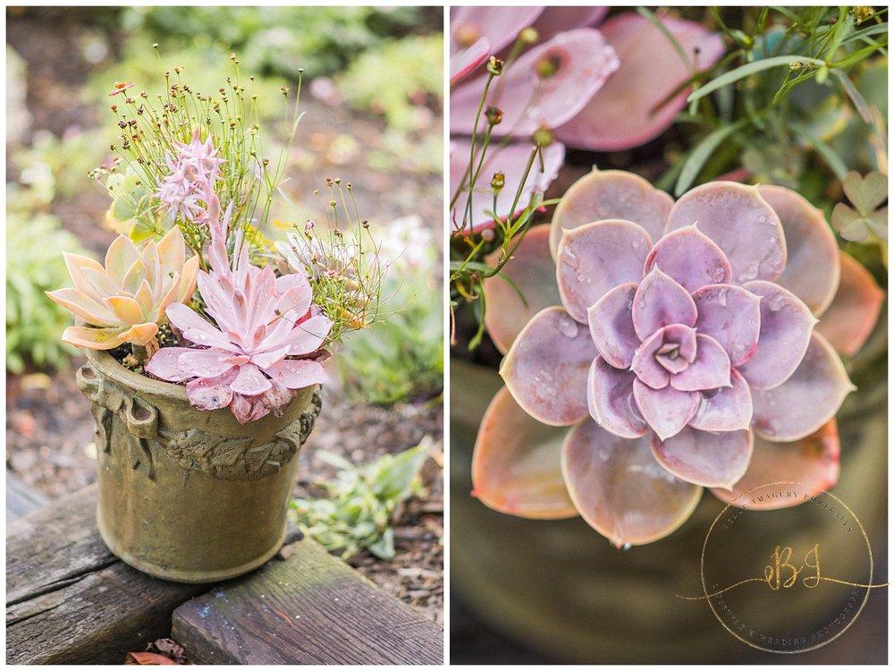 Surreybrooke Chic Garden Styled Shoot_0154.jpg