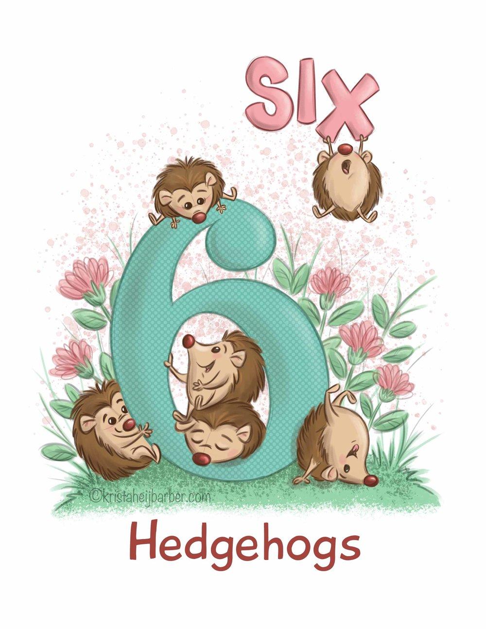 6-Hedgehog2.jpg