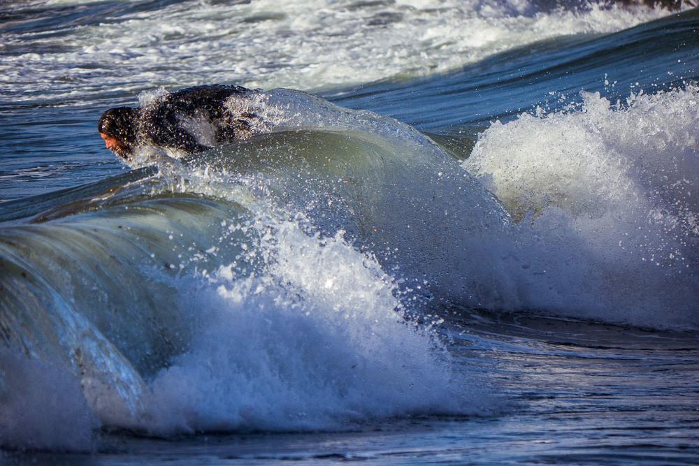 Thibault-Cartier-surf-4.jpg