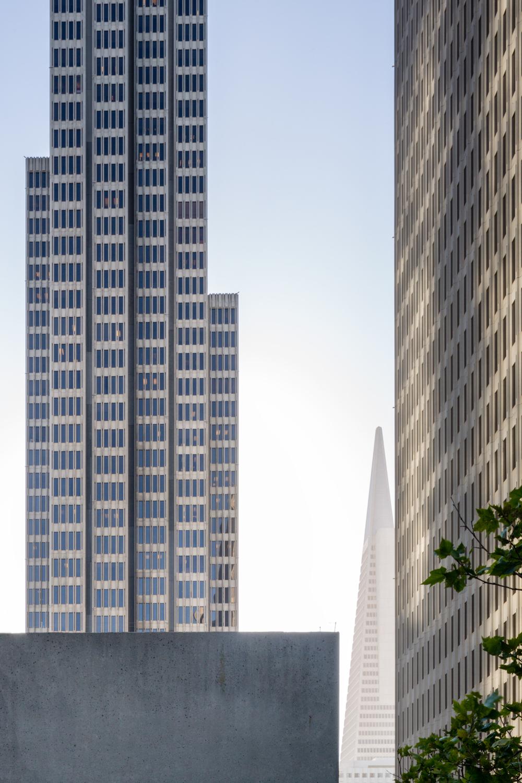 Thibault_Cartier_Architecture_2.jpg
