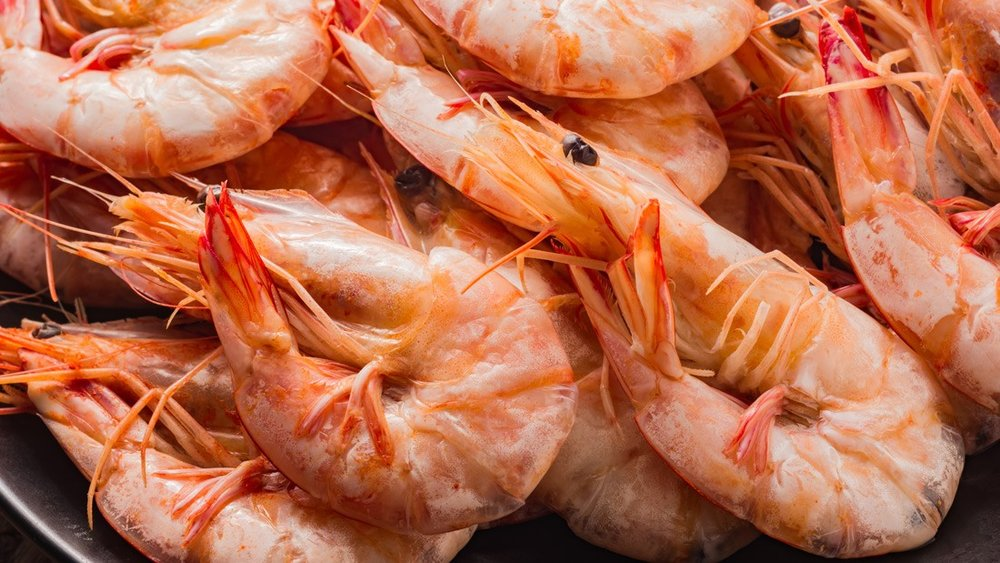 food-industry-shrimps-1_Header_1.jpg