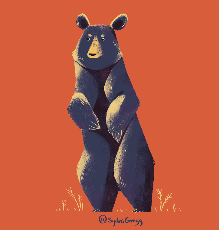 BearStudies_SydniGregg.png